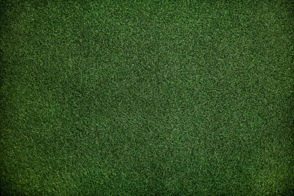 The Grass green pattern