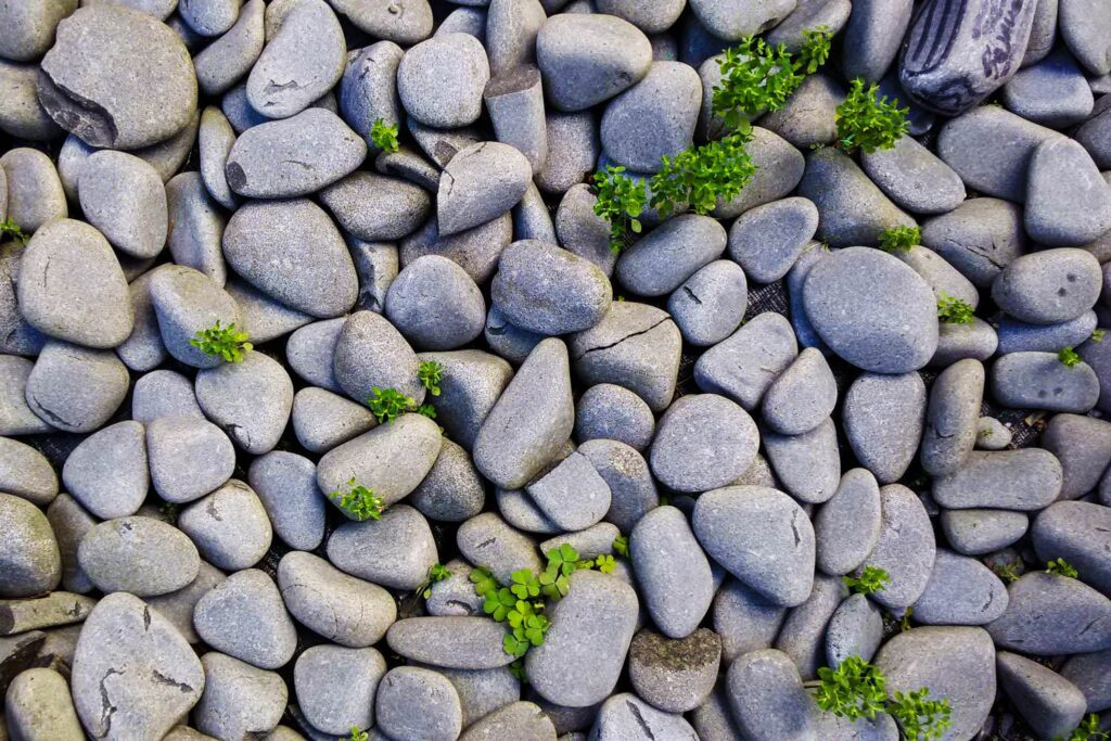 Pebbles background of rock stone