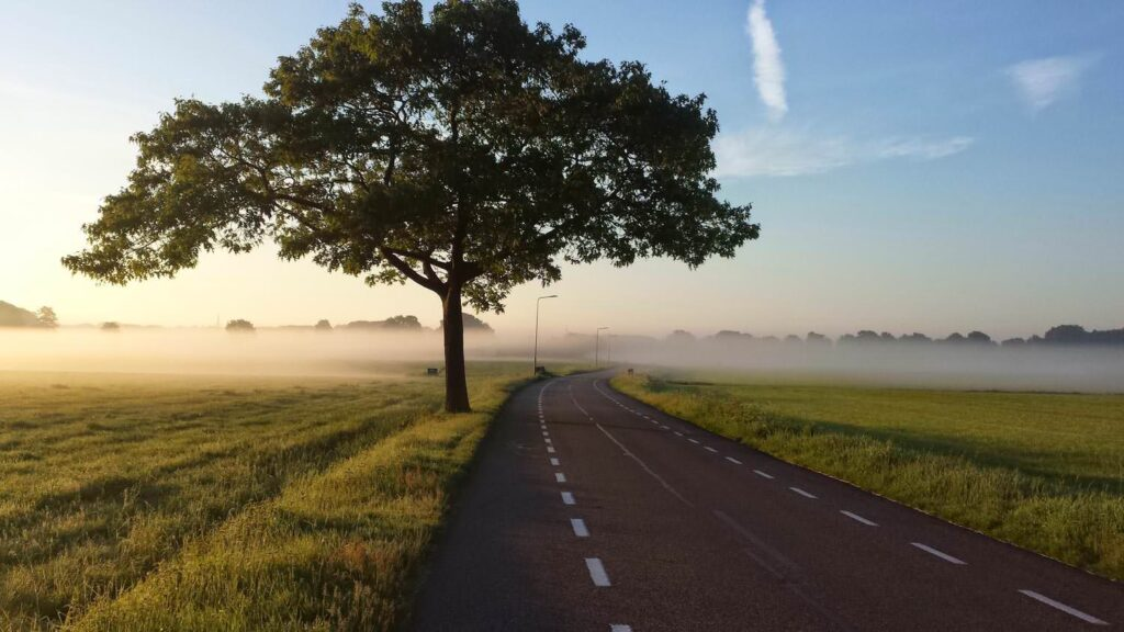 Foggy road  in countryside